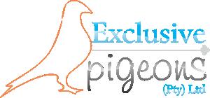 Exclusive Pigeons Logo